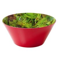 Mixed Salad Printed Large Melamine Bowl