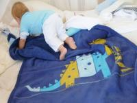 Large Niki Blanket from David Fusseneger - Dinosaur