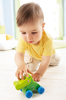 Animal Push-Along Crocodile Chris from Haba - Click Image to Close